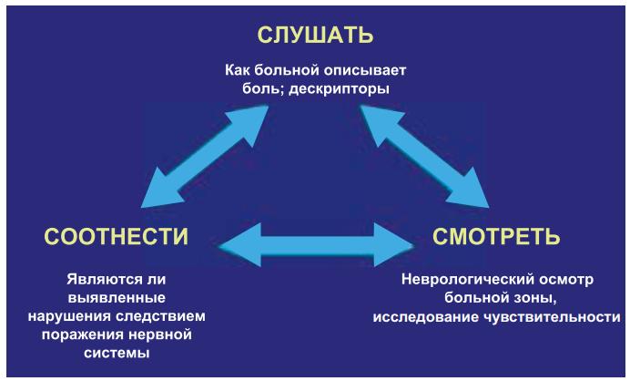 Kлинический подход «три С» в диагностике нейропатической боли