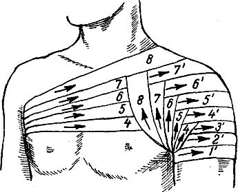 Колосовидная повязка на область плечевого сустава
