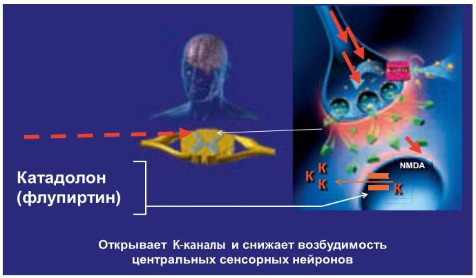 Механизм действия флупиртина