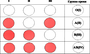 Определение группы крови по системе AB0 стандартными сыворотками