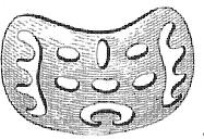 Подбородочная шина