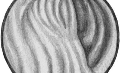 Нормальная слизистая оболочка кишечника